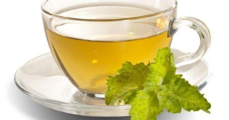yeşil çay hakkında herşey
