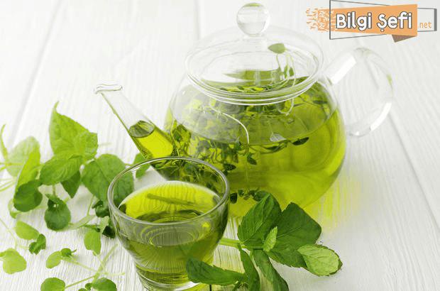 yesil çay zayıflatır mı, yeşil çayın faydaları