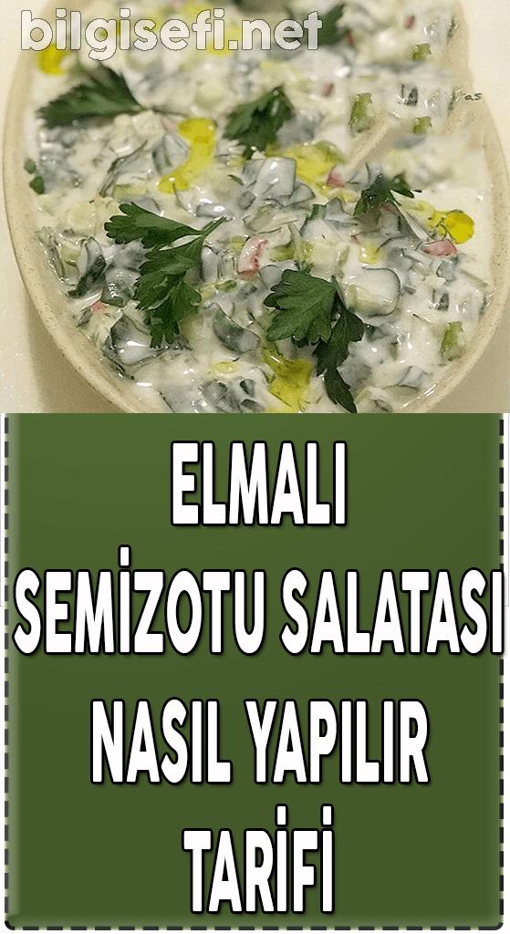elmalı semizotu salatası nasıl yapılır tarifi